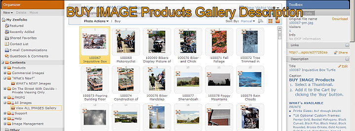 Buy all image products gallery