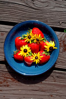100187 Strawberries And Black-eyed Susan Flowers